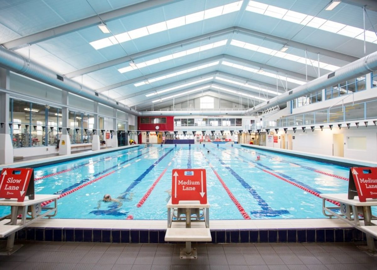 Swimming Clubs Teams Swimming Squads Ymca Auckland