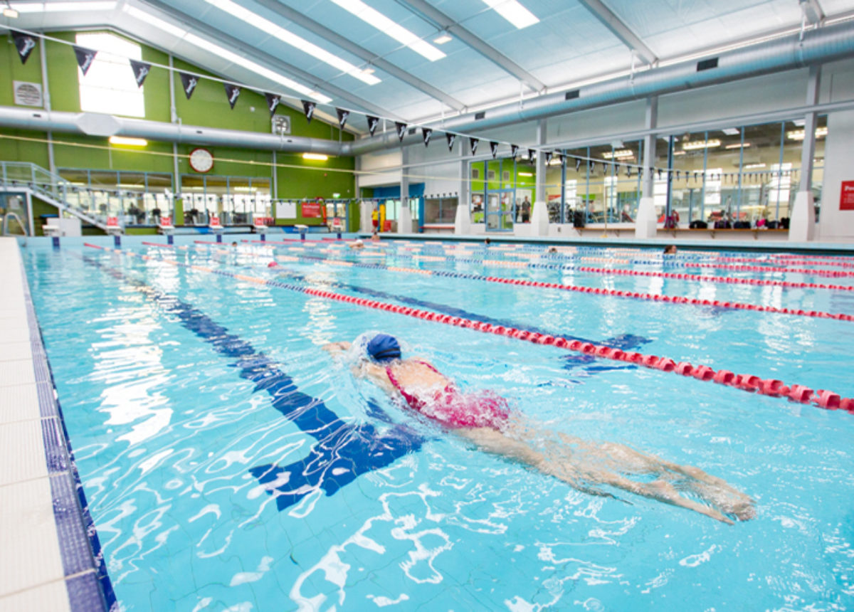 swimming pools & swimming lessons ymca swim auckland